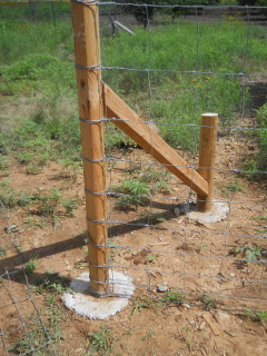 Starting Net Wire Wrapped at Fence End Post