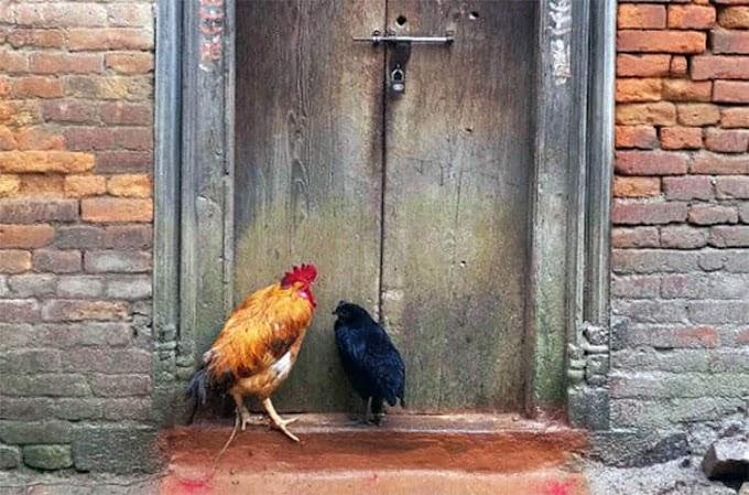 Οι «Πόρτες του Κατμαντού» καταγράφουν τους ζωτικούς κοινωνικούς χώρους της πρωτεύουσας του Νεπάλ