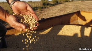 Óleo de soja é o principal subproduto do cultivo transgênico para o consumidor (Foto: Reuters)