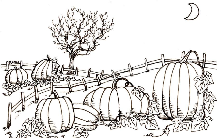 pumpkin_patch_bw