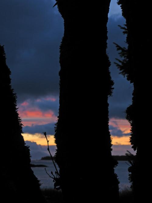 sunrise along my route to work, Kasaan, Alaska