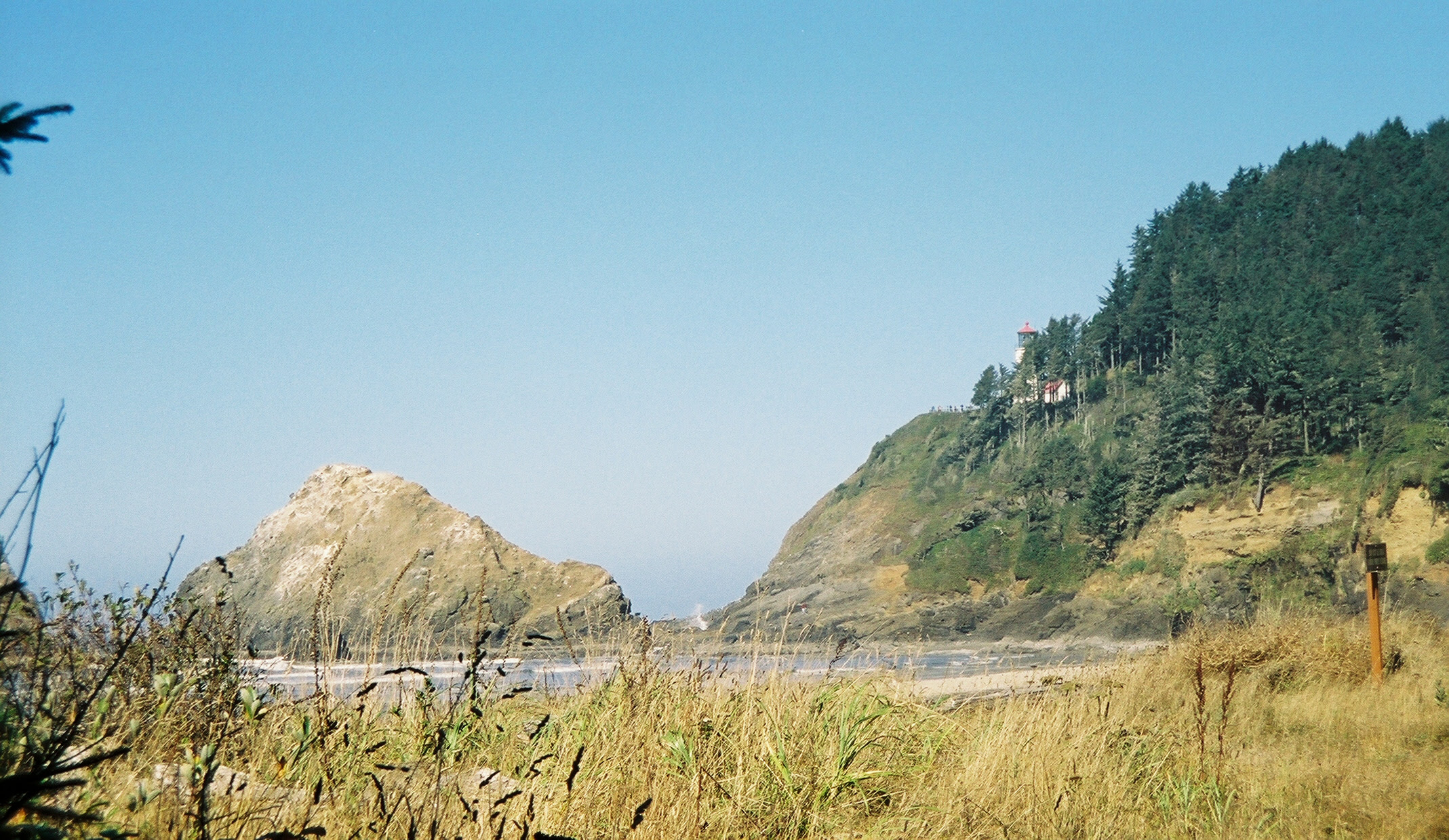 Heceta Head and lighthouse surrounded by salal meadows, rhododendrons and Sitka spruce groves with Parrot Rock to the left