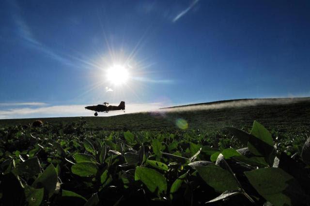 Número de acidentes preocupa profissionais da aviação agrícola Tadeu Vilani/Agencia RBS