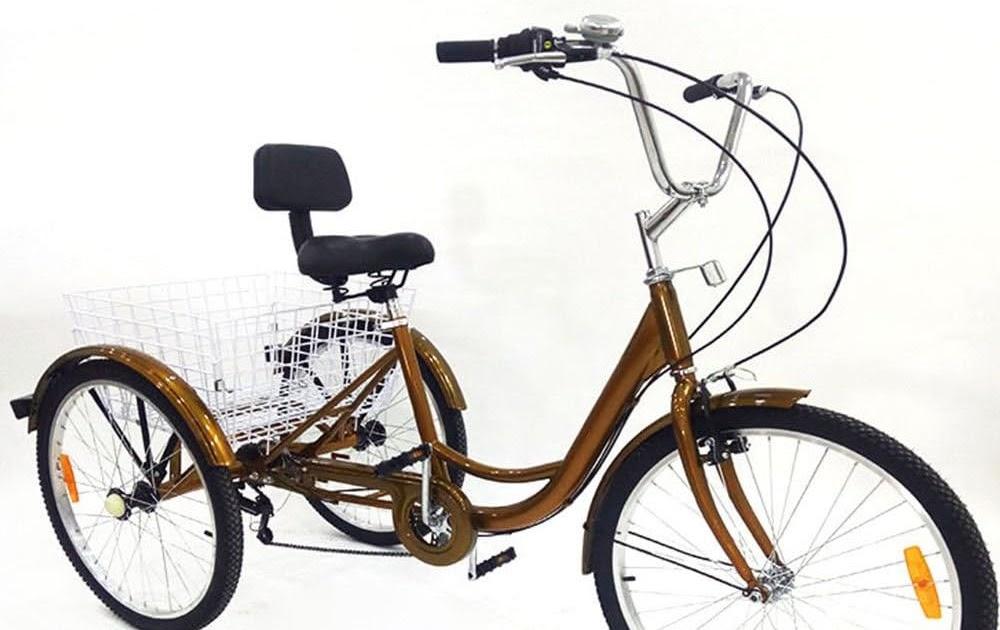 Windgoo V/élo /Électrique Pliant 350W//36V Batterie Lithium Rechargeable Jusqu/à 25km//h Vitesse R/églable 12 Pouces Noir Bike Adulte Unisexe