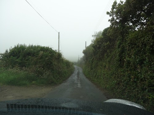 Lane through the hedgerows in Cornwall