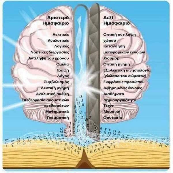 Αποτέλεσμα εικόνας για εγκεφαλος