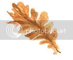 photo web-leaf_zpsxmyqohll.jpg