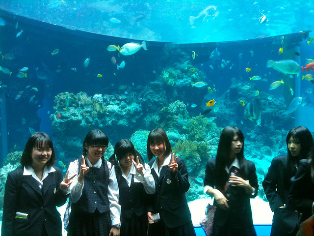 Schoolgirls at Churaumi Aquarium, Okinawa