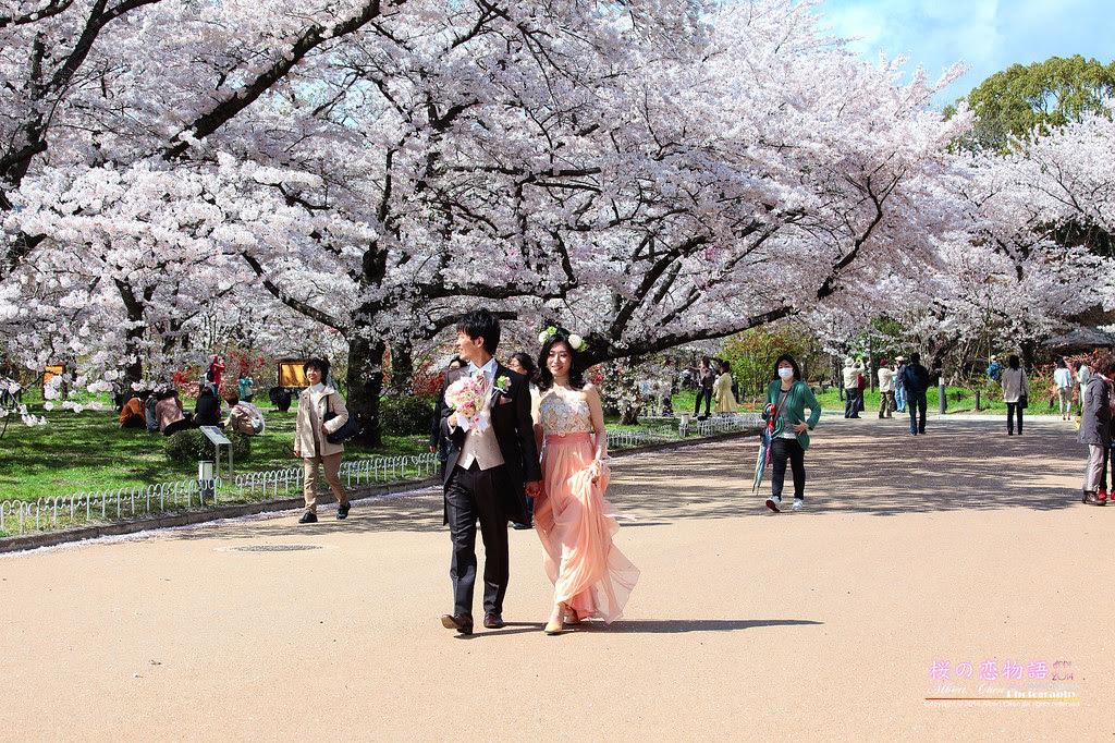 2014-04-04-14h07m59IMG_4665
