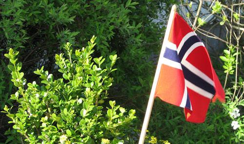 flag :: flagg #1