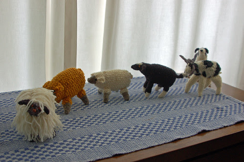 1sheep on parade.jpg