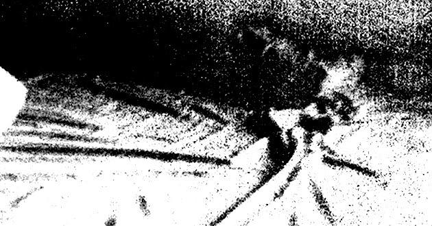 Whirr -- Around (detail)