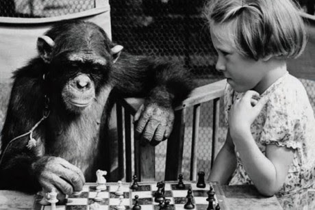 "A detail from the cover of ""Games Primates Play: An Undercover Investigation of the Evolution and Economics of Human Relationships"""