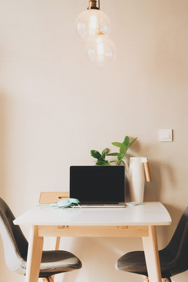 Can Adding Plants to your Office or Study Areas actually Improve Productivity and Worker Health?