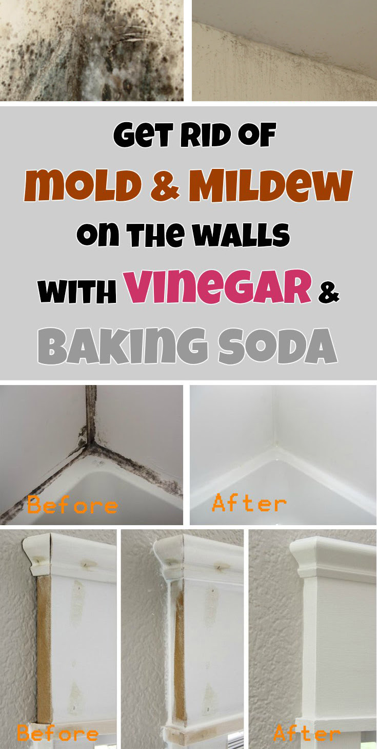 Get Rid Of Mold Mildew On The Walls With Vinegar And Baking Soda