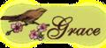 Gracesiggy