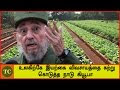 Cuba's organic revolution | Environment