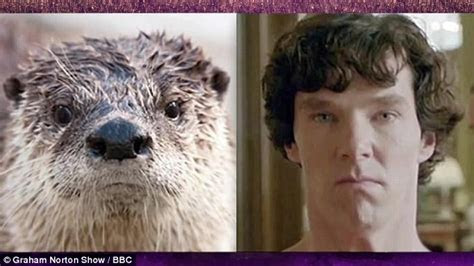 Benedict Cumberbatch imitates otter on Graham Norton Show   Daily Mail Online