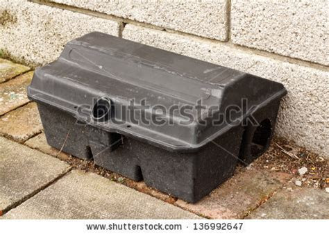Rat traps Stock Photos, Images, & Pictures   Shutterstock