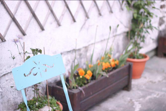 photo 19-jardin_deco_plantes_printemps_zps82b9659a.jpg