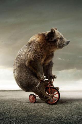 circus-bear-f