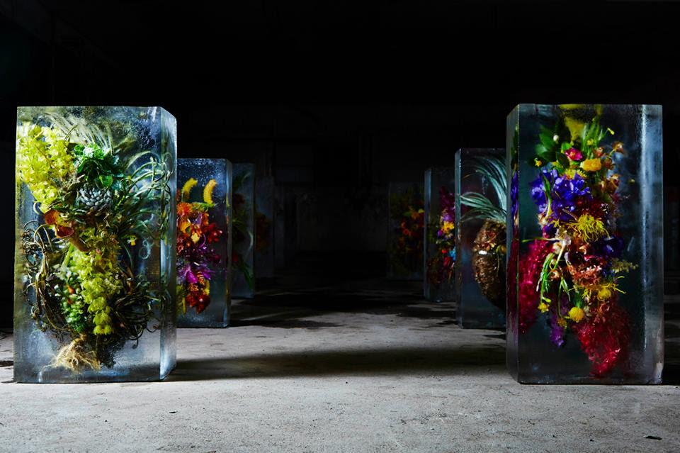 iced-flowers-makoto-azuma (4)