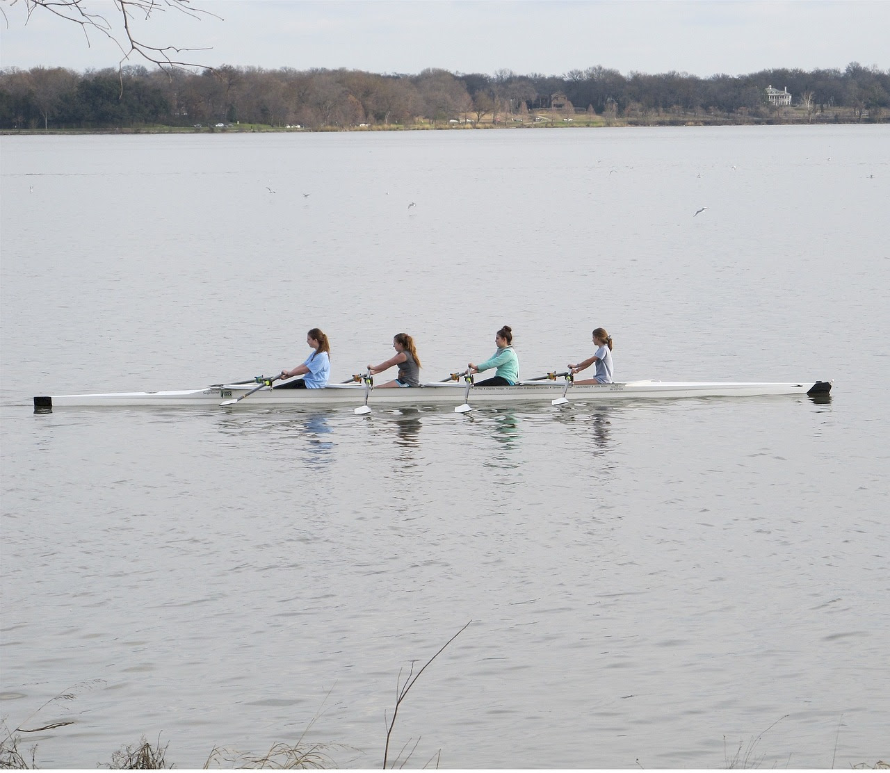 rowing-671954_1280