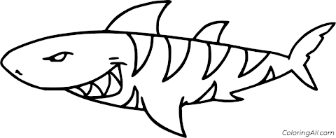 Ideas For Shark Coloring