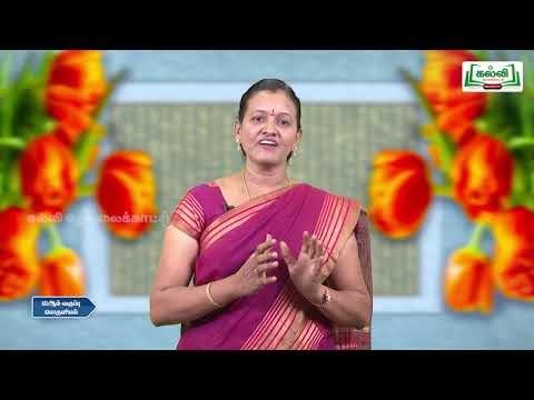12th Economics பன்னாட்டு பொருளியல் Kalvi TV