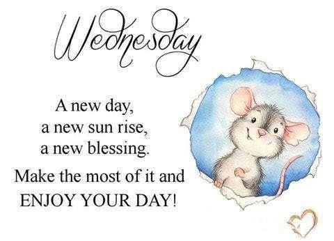 Wednesday Quote A New Day Goodmorningpicscom