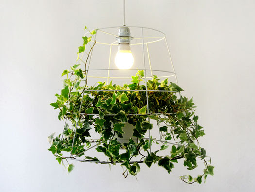 photosynthesis lamp meirav barzilay thumb 525xauto 186641 60 Examples of Innovative Lighting Design