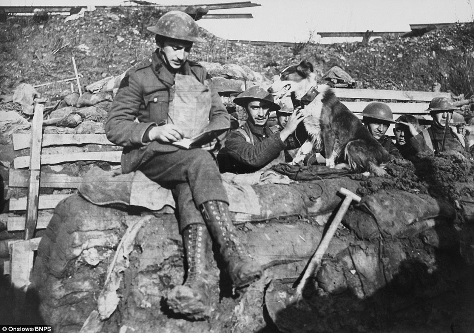 WW1 photographs reveal the reality of life on the Western Front ...
