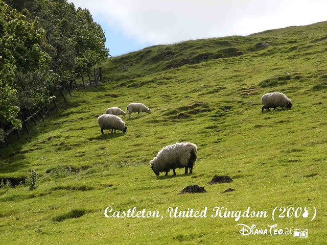 Castleton 10