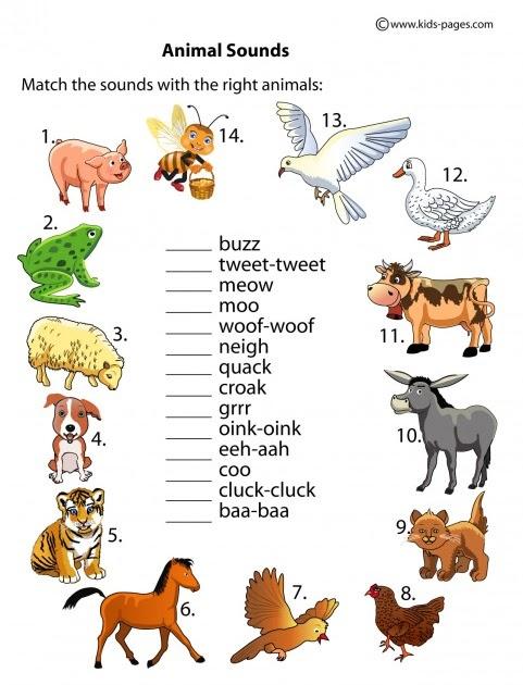 Animal Worksheet New 935 Animal Sounds Worksheet