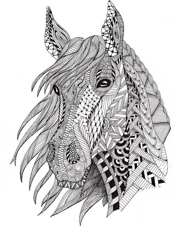 Coloriages Anti Stress Chevaux