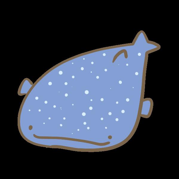 ジンベイザメのイラスト かわいいフリー素材が無料のイラストレイン