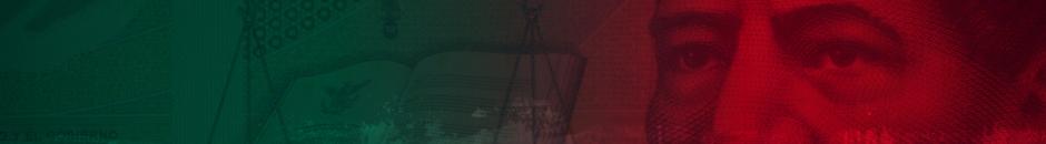 http://store.akamai.steamstatic.com/public/images//promo/mxn/landing_page.png