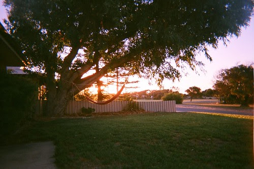 Green Head Sunset