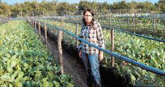 Η 28χρονη Παναγιώτα Βλάχου από την Πουλίτσα Κορινθίας έχει  σπουδάσει Ιταλική Φιλολογία, αλλά  προτίμησε να συνδέσει το μέλλον της  με την εκτροφή σαλιγκαριών