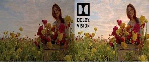 Dolby Vision Technology