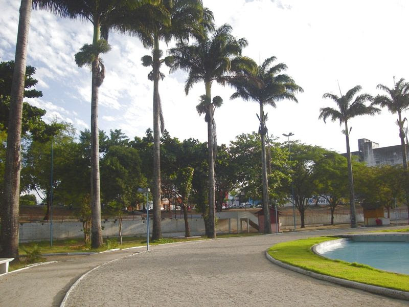 Ficheiro:Açude Novo Campina Grande Palmeiras Imperiais2.jpg