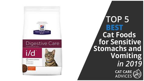 top   cat foods  sensitive stomachs  vomiting
