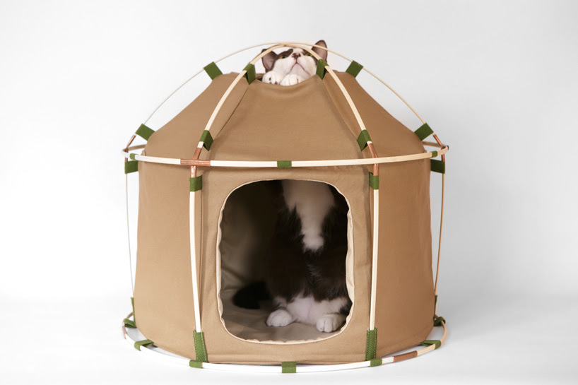 pitch your pet the perfect abode with the cat study house