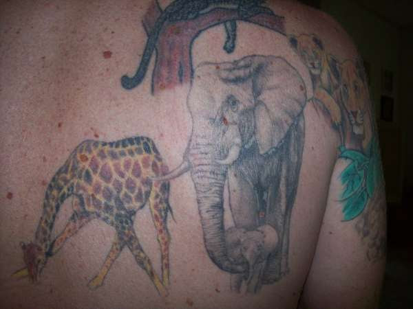 Right Back Shoulder Elephant And Giraffe Tattoo