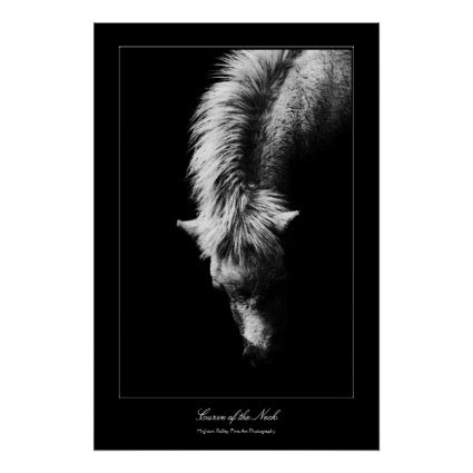 Fine Art Curve Of The Neck, gallery style Print