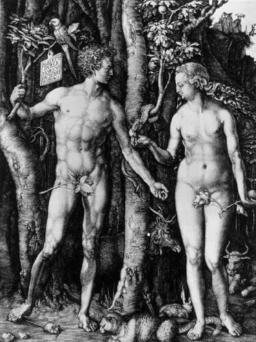 Adam and Eve, Albrecht Dürer, Engraving