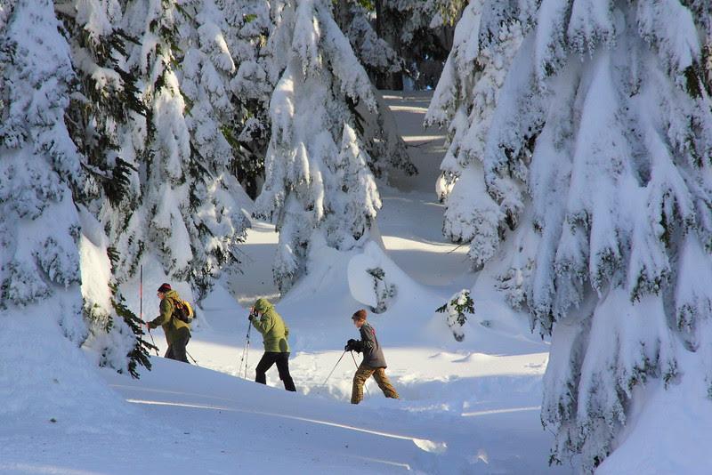 IMG_0479 Ranger-Led Snowshoe Walk
