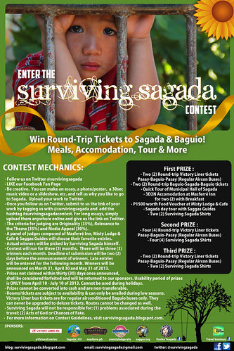 surviving sagada Mechanics 2