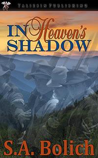MediaKit_BookCover_InHeavensShadow