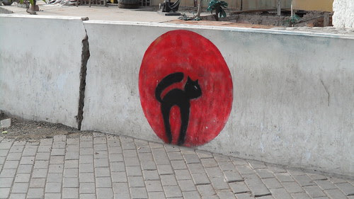 gato de luna roja